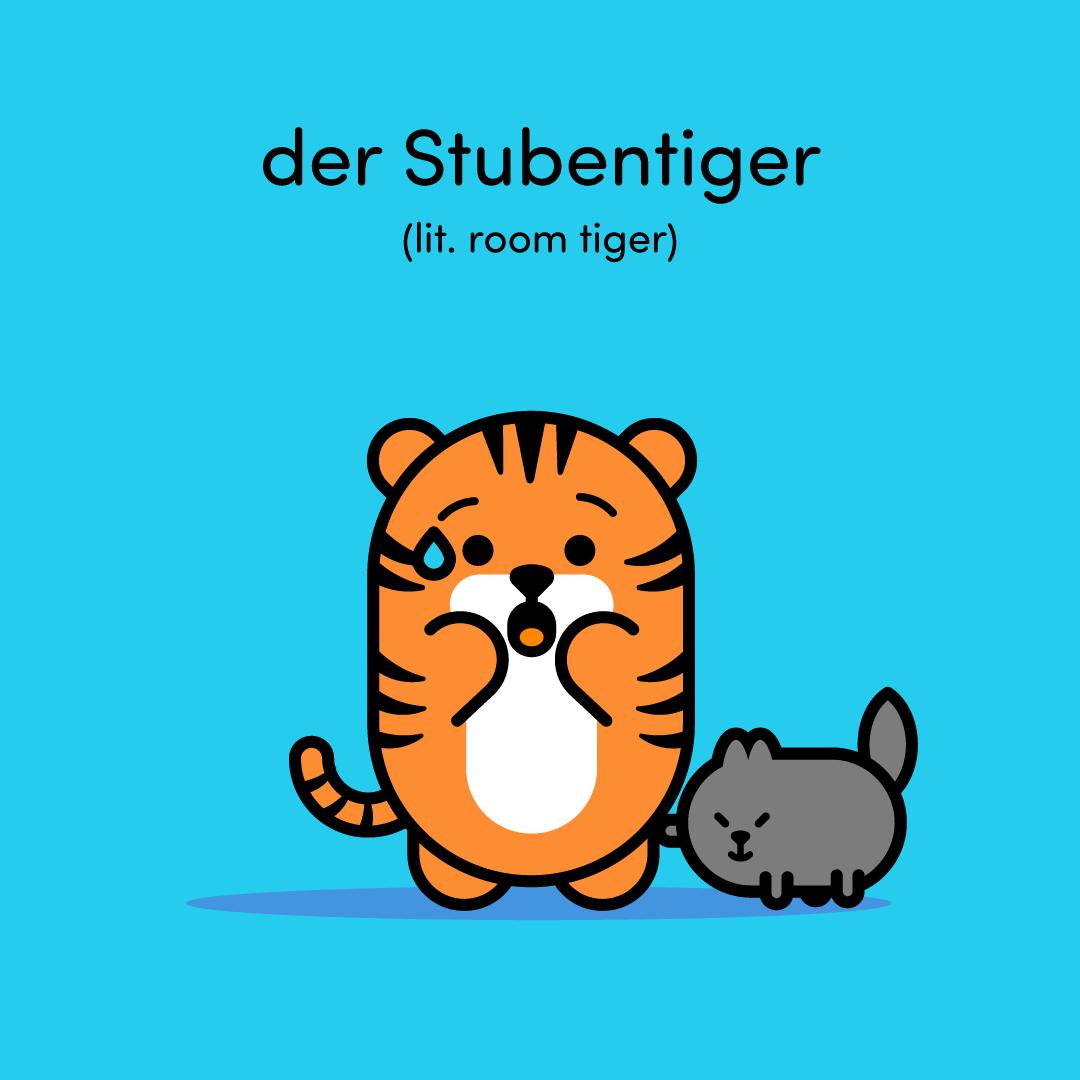 stubentiger-room-tiger