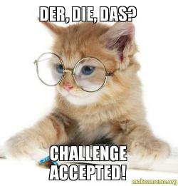 kitten accepts german language challenge